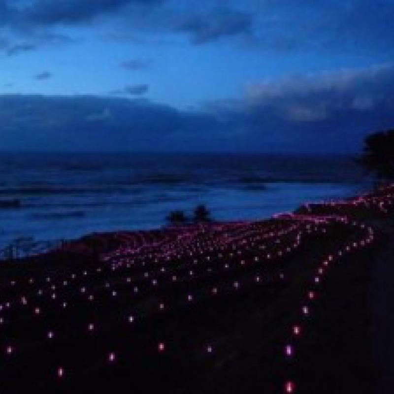 LEDライトによる棚田イルミネーション、ギネス世界記録認定!