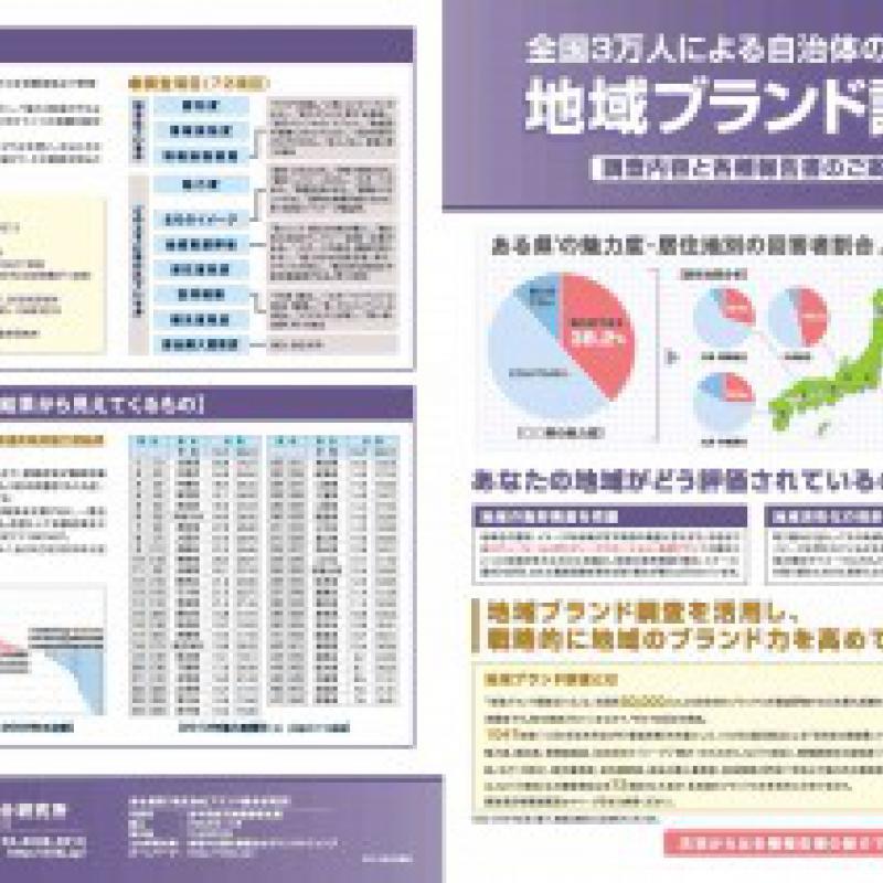 地域ブランド調査2013 パンフレット