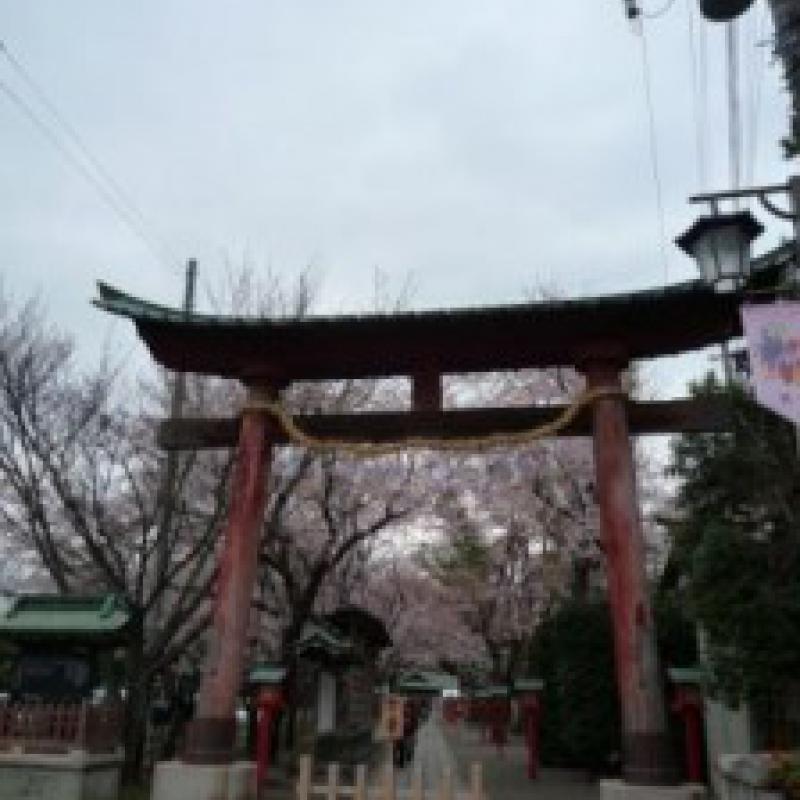 アニメと神社でまちおこし (埼玉県久喜市)