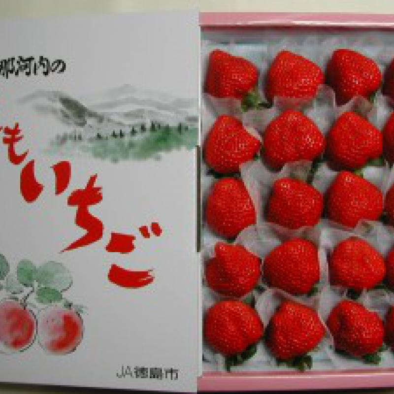 大きく希少性のある高級イチゴ「ももいちご」 (徳島県佐那河内村)