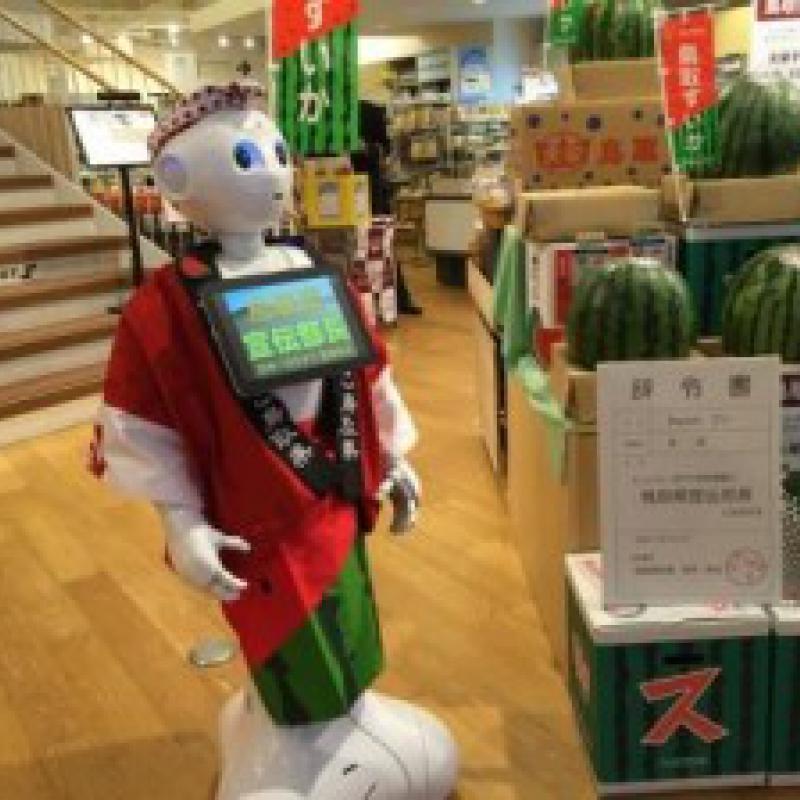 鳥取県、人型ロボットPepperを宣伝部長に任命
