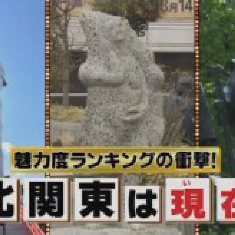 秘密のケンミンshow「魅力度ランキングの衝撃」で北関東を分析(11/26放映)