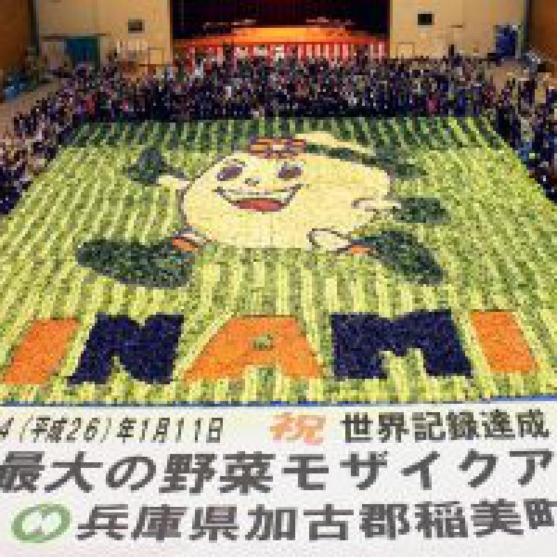 特産野菜を並べて402平米の世界最大モザイクアート作成