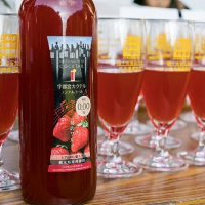 乾杯リレーのギネス世界記録達成で日本遺産登録を祝う|宇都宮市