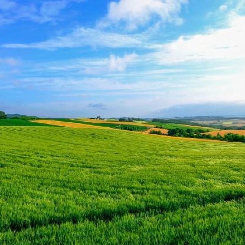 農林水産省2019年4月末全国428地域で農泊事業者を採択