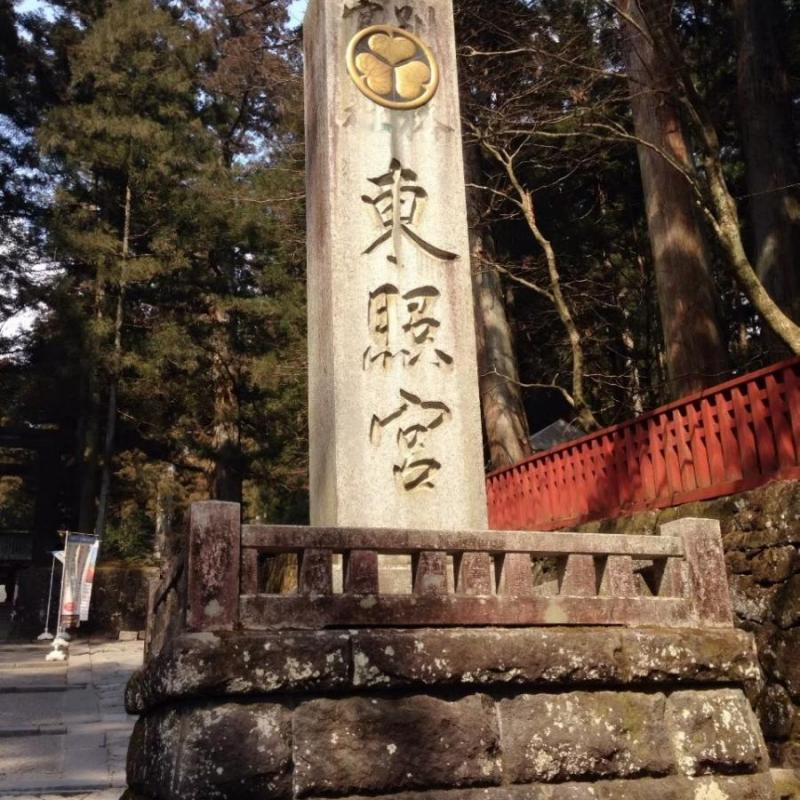食べて栃木県を応援!食品ロス対策「おうちで観光グルメ!」