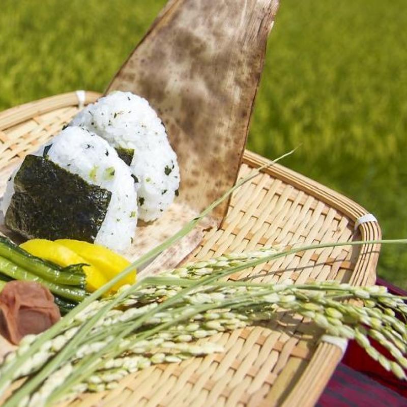 農林水産省 新たな販路の確保、未利用食品の活用促進へ ビジネス募集