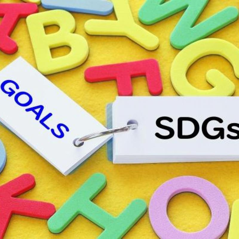 SDGs 日本の企業でいまはどのような活動が必要か?