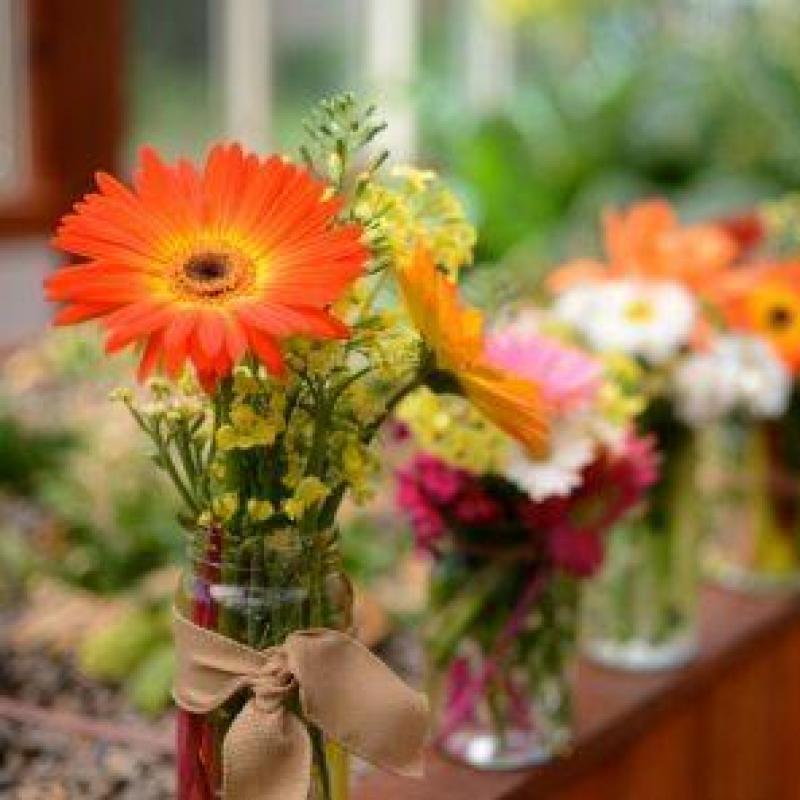 オフィスに花を飾ろう!体験モニター企業募集(5社・無料)