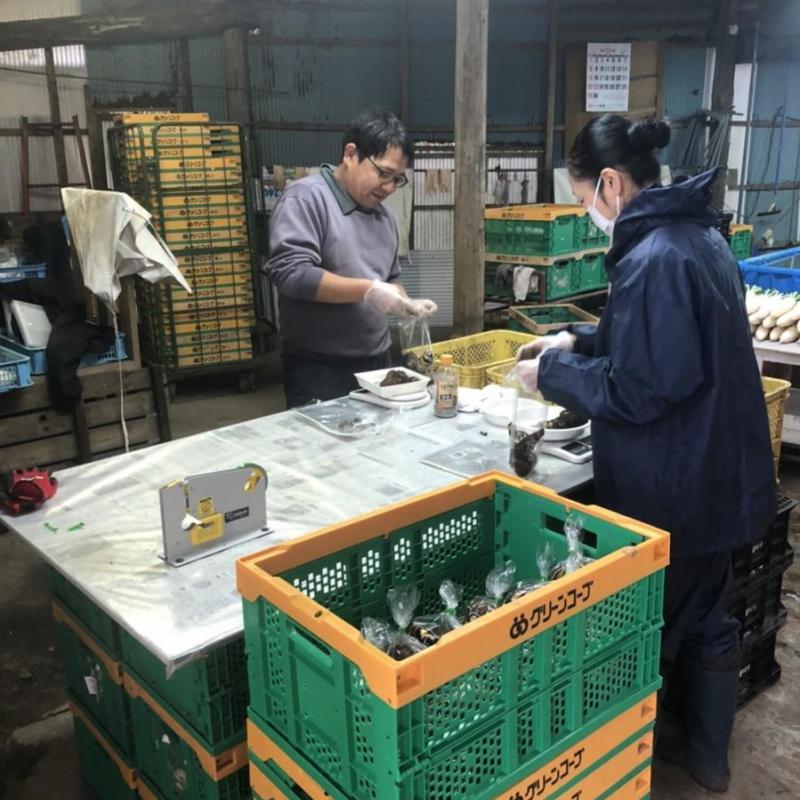 全国6箇所で農業研修 就農・移住希望者も(熊本県小国町編)