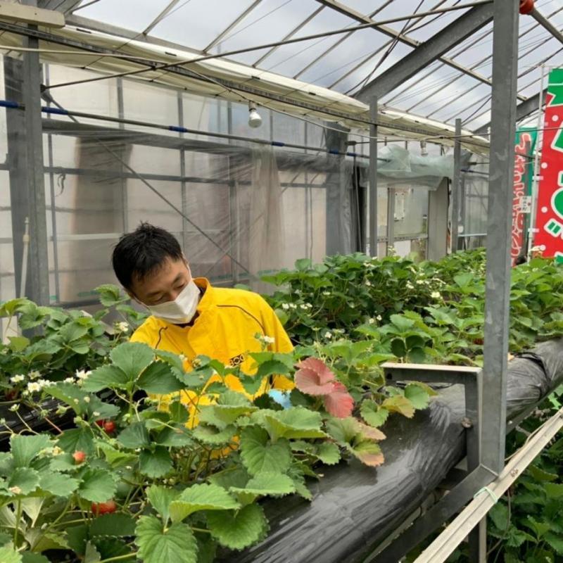 全国6箇所で農業研修 就農・移住希望者も(長崎県大村市編)