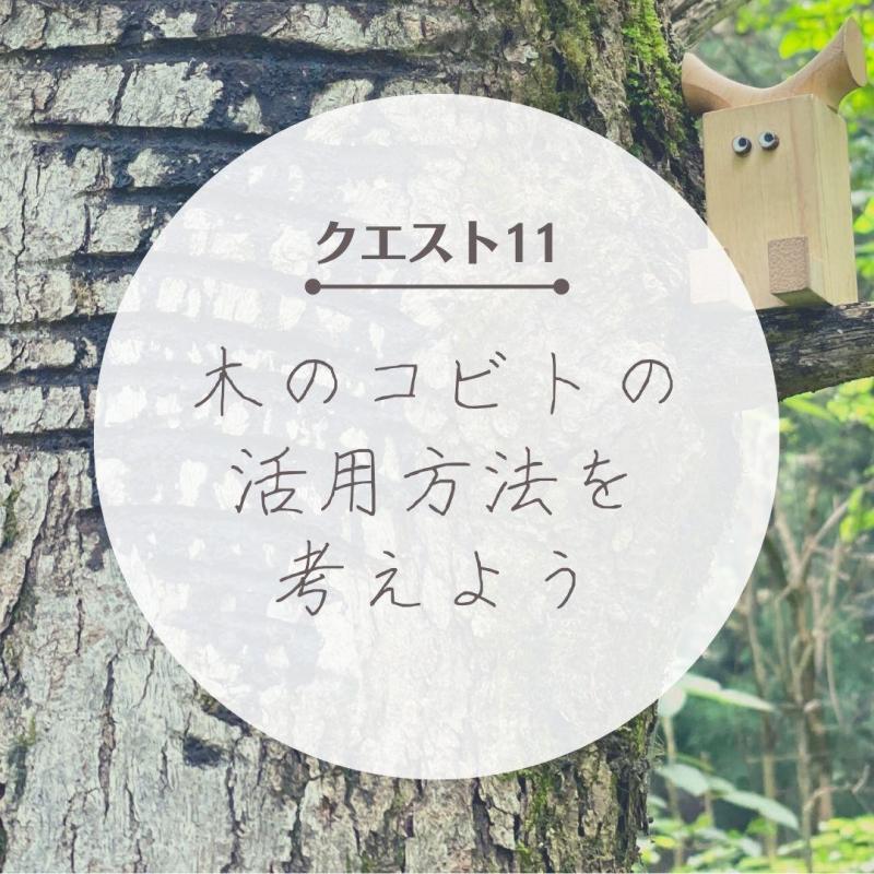 """【クエスト11】""""木のコビト""""の活用方法を考えよう"""